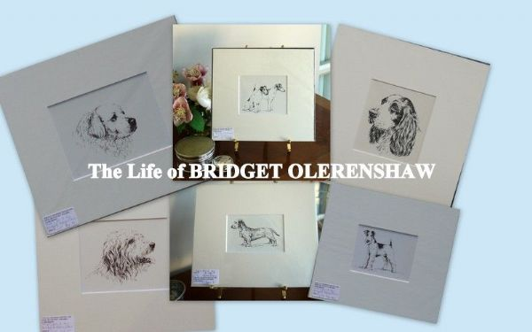 The Artist Bridget Olerenshaw